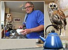 Meet Bertie, the owl who is afraid of going outside.. and he loves nothing more than helping his owner make a cup of tea